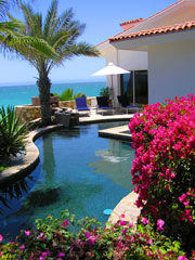 landscaped pool with tropical flowers and palm tree